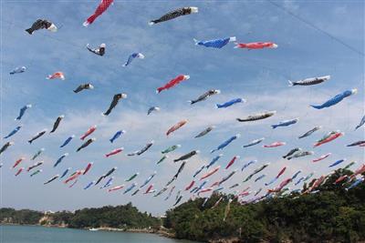 約200匹の色鮮やかな鯉のぼりが比謝川上空を泳ぐ!「第25回 比