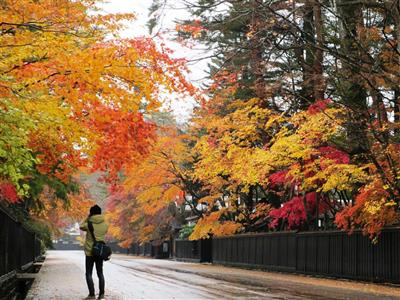 秋の風物詩「紅葉」に染まる絶景を見に行こう♪軽井沢・大阪・宮島・