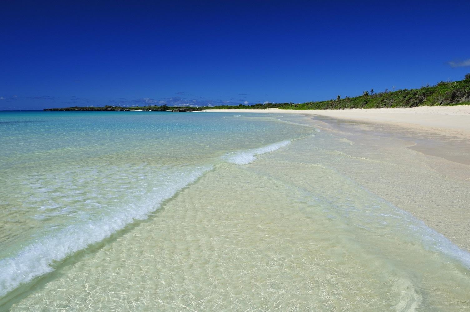 ビビビーチ
