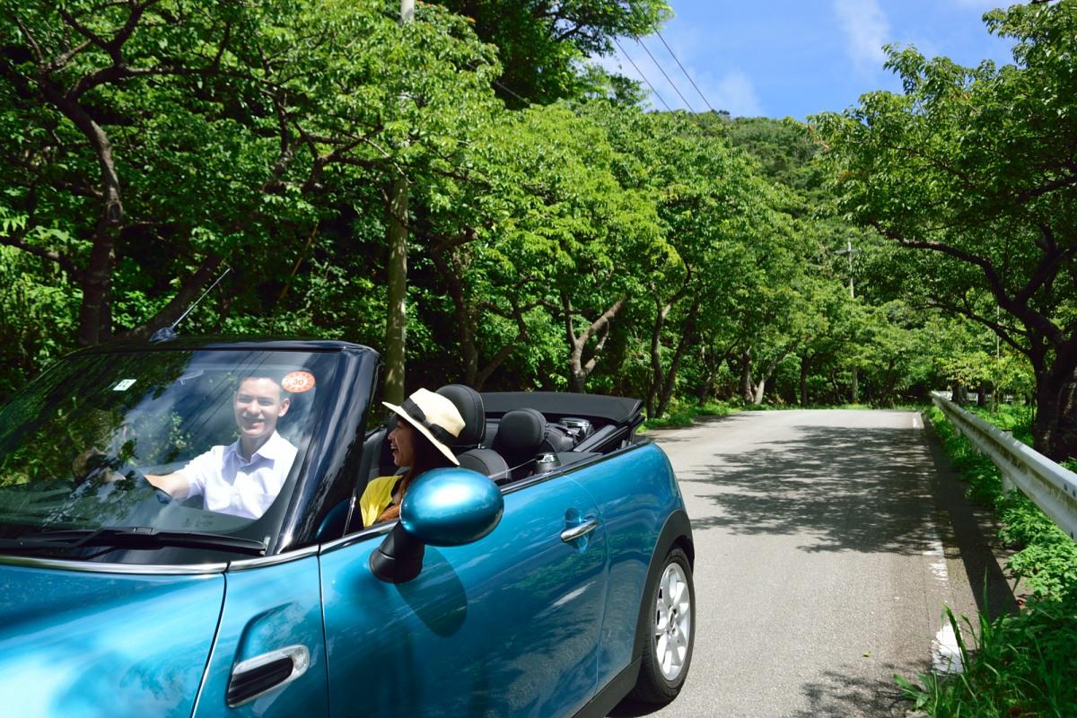 八重岳のドライブ