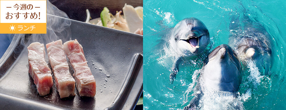 マリンピアザオキナワ/レストラン「ブリーズ」